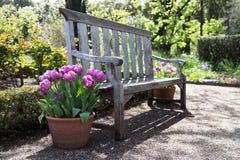 Spring Garden Royalty Free Stock Image