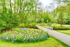 Spring garden with blooming flowers and trees Stock Photo