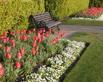 Spring Garden Border. Colouful spring floral border with bench seating Royalty Free Stock Photo