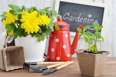 Spring in the garden concept Stock Photography