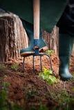 Spring garden concept. Royalty Free Stock Photo