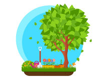 Spring garden with flower and tree Royalty Free Stock Photo