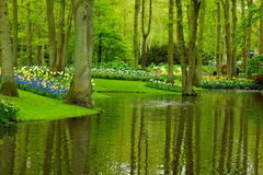 Spring garden Keukenhof Stock Photo