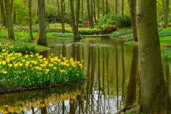 Spring garden Keukenhof, Netherlands Royalty Free Stock Photo