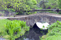Spring garden by a lake with rustic stone bridge Stock Image