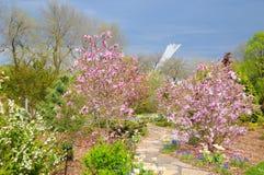 Spring garden. royalty free stock photos