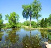 Spring garden landscape royalty free stock photo