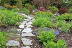Spring garden path Royalty Free Stock Photo