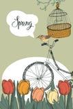 Spring garden, tulips and bike, design card Stock Image