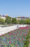 Spring garden with tulips in front of the National Palace of Culture, Sofia, Bulgaria Royalty Free Stock Photography