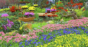 Spring garden view Stock Photography