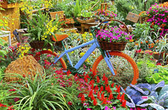 Spring garden with vintage bicycle Stock Images