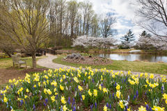 Spring Garden Virginia Park Stock Photo