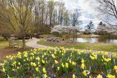 Spring Garden Virginia Park Stock Photo