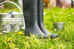 Spring garden Stock Photography