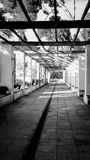 Spring garden way tunnel with white columns and a wooden pergola through which the sun rays pass, Barcelona, Spain. Black and whit. Beautiful pergola entrance Royalty Free Stock Images