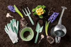 Spring garden works. Gardening tools and flowers on soil. royalty free stock photos