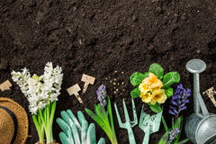 Spring garden works. Gardening tools and flowers on soil. Stock Photo