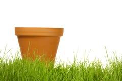 Free Spring Gardening Stock Image - 8856461