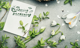 Spring gardening lettering with various springtime plant: Lily of Valley, crocus flowers and spring twigs Stock Photos