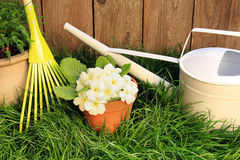 Spring gardening tools Stock Images