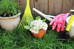 Spring gardening tools Royalty Free Stock Images