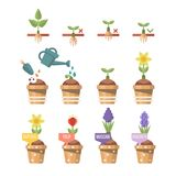 Spring gardening vector flat illustration in pastel colors with cute flowers. Light design Royalty Free Stock Photos