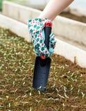 Spring Gardening Works Royalty Free Stock Photo