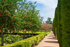 Spring gardens at the Alcazar, Cordoba, Spain. Spring gardens at the Alcazar de los Reyes Cristianos in Cordoba, Spain Stock Photography