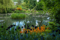 Spring gardens of Giverny, France Royalty Free Stock Image