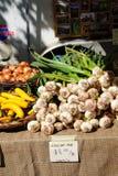 Spring garlic, onions and yellow squash Royalty Free Stock Image