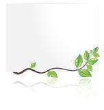 Spring gift card Royalty Free Stock Photo
