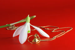 Spring gift - snowdrop flower and jewelry. Snowdrop flower and jewelry on red background Stock Photo