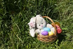 Happy Easter painted colored eggs bunny basket Royalty Free Stock Photos