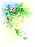 Spring girl. Spring background with flowers and girl face outline Royalty Free Stock Photos