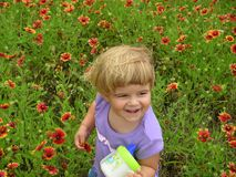 Spring girl. My daughter in flower field (San Antonio botanical gardens Royalty Free Stock Photos
