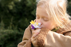 Spring girl. Little girl smelling crocuses Stock Image