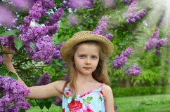 Spring girl portrait with lilac flowers Royalty Free Stock Photos