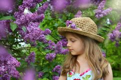 Spring girl portrait with lilac flowers Stock Photography