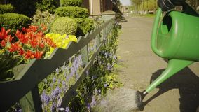Spring, The girl is working in the garden. Watering flowers. 