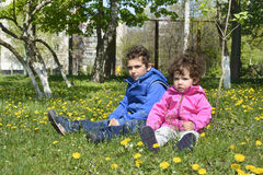 In the spring on a glade with dandelions sitting small curly boy Royalty Free Stock Photography