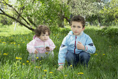 In the spring on a glade with dandelions sitting small curly boy Royalty Free Stock Photo