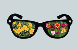 Spring Through Glasses Stock Photography