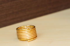 Spring gold ring Stock Photos