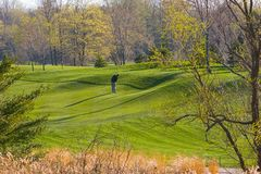 Spring golf Stock Images