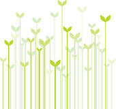 Spring grass royalty free illustration
