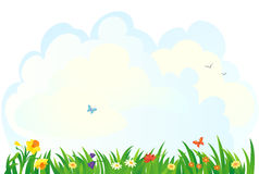Spring grass background. Background with a spring grass and flowers Royalty Free Stock Image