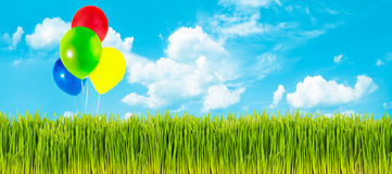 Spring grass and balloons Stock Photos