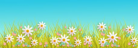 Spring grass and flowers border on blue sky background with copy space. Spring grass and flowers border on blue sky background with copy space - greeting card Royalty Free Stock Photos