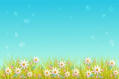 Spring grass and flowers border on blue sky background with empty space for text. Spring grass and flowers border on blue sky background with empty space for Royalty Free Stock Images